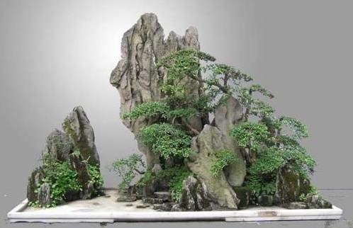 甘肃假山盆景