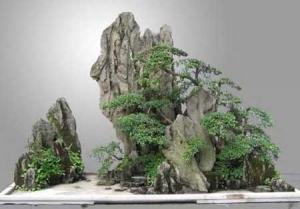 兰州假山石盆景